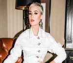 Katy Perry Urges Sydney Government to Save Historic Amusement Park