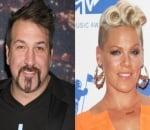 Joey Fatone Recalls Being 'Friend Zoned' by Pink: 'I Guess I Wasn't Her Type'