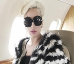 Lady GaGa Offers $500K Reward After Dogs Were Stolen and Caregiver Was Gunned Down