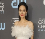 Angelina Jolie So Picky About Her Partners: I Have Very Long List of Nos