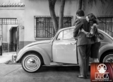 'Roma' Lands Best Picture at 2018 Los Angeles Film Critics Association