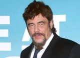 Benicio Del Toro to Lend Voice to Thieving Fox in 'Dora the Explorer'