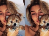 Fans Enraged After Hailey Baldwin Shares Video of Her 'Toy'-ing Her Dog