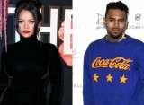 Rihanna's Fans Furious After Chris Brown Flirts With Her on Instagram