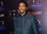 Chadwick Boseman Aims to Establish Himself as a Hollywood Brand