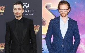 Sebastian Stan Was Concerned About Tom Hiddleston When He Was Dating Taylor Swift