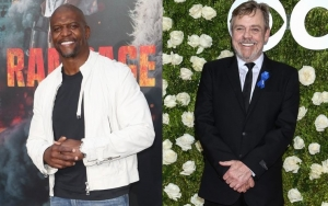 Terry Crews Credits Mark Hamill for 'Brooklyn Nine-Nine' Revival