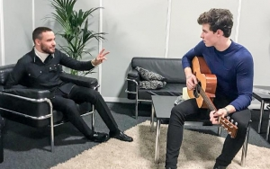 Liam Payne Wants to Help Shawn Mendes Avoid Pressures of Fame