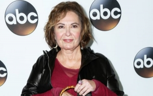 Roseanne Barr Hits Back at 'Roseanne' Co-Stars Following Controversial Tweets