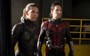 'Ant-Man and the Wasp' Two Post-Credits Scenes Show the Dire Aftermath of 'Avengers: Infinity War'