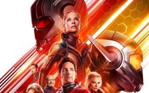 'Ant-Man And The Wasp' Rules North American Box Office