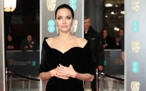 Angelina Jolie Stands by Child Support Claims: Loan Is Not Child Support