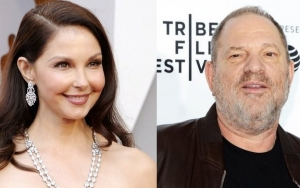 Mediation Session Set for Ashley Judd's Defamation Lawsuit Against Harvey Weinstein