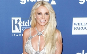 Britney Spears' Lawyer Demands for Increase in Salary