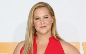Amy Schumer Lets Out Second Video of Her Vomiting From Severe Nausea