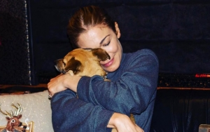 LeAnn Rimes Puts Three Concerts on Hold to Mourn Loss of Her Dog