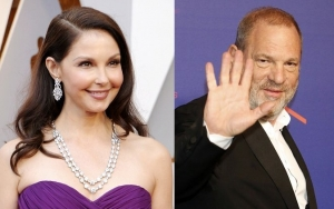 Ashley Judd Pleads for Denial of Harvey Weinstein's Request to Postpone Lawsuit