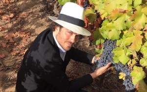 Ian Somerhalder Blames Wine for Having to Ditch Faux Hawk Hairstyle Halfway Through