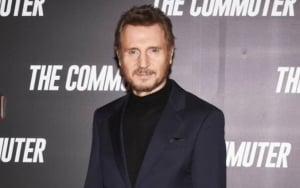 Liam Neeson Admits Failure to Realize Impact of His 'Hurtful and Divisive' Revenge Comments