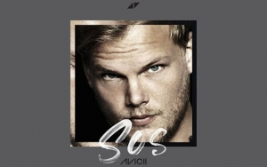 Avicii's First Posthumous Release 'SOS' Features Aloe Blacc - Listen to Emotional Track