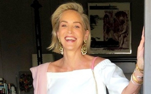 Sharon Stone Condemns 'Brutally Unkind' Treatment She Got After Suffering a Stroke
