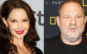 Ashley Judd Credited for Bringing Harvey Weinstein's Sexual Assault Scandal to Light