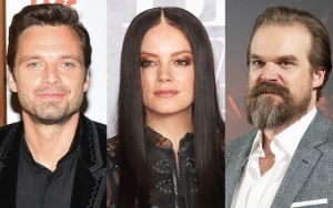 Sebastian Stan Confesses to Googling Lily Allen Over David Harbour Romance