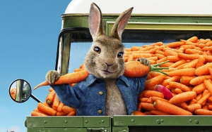 'Peter Rabbit 2' Follows 'No Time to Die' Lead in Postponing Release Date Over Coronavirus