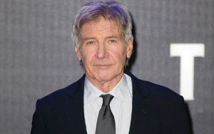 Harrison Ford Under Investigation for Mistakenly Crossing Airport Runway With His Plane