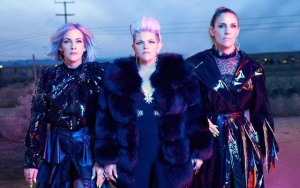 Dixie Chicks Come Close to Revamping Stage Moniker to 'MEN'