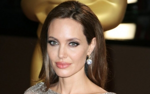 Angelina Jolie Excited to Strengthen Women's Independence Through Women for Bees