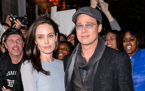 Angelina Jolie Offers to Show 'Proof' of Domestic Violence Amid Custody Battle With Brad Pitt
