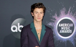 Man Suspected of Stealing Shawn Mendes' Car Has Been Arrested