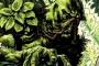 'Swamp Thing' Live-Action Series Is in the Works With James Wan Attached