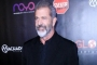 Mel Gibson Wants to Keep 'Sense of Anonymity' by Steering Clear of Politics