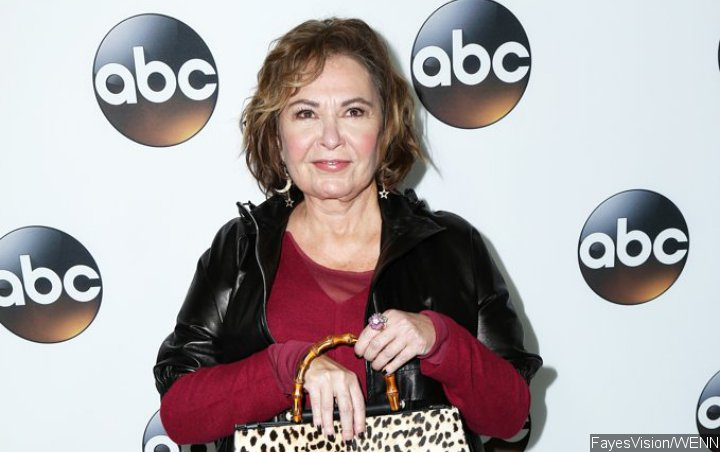 Roseanne Barr Announces First TV Interview Following Show Cancellation