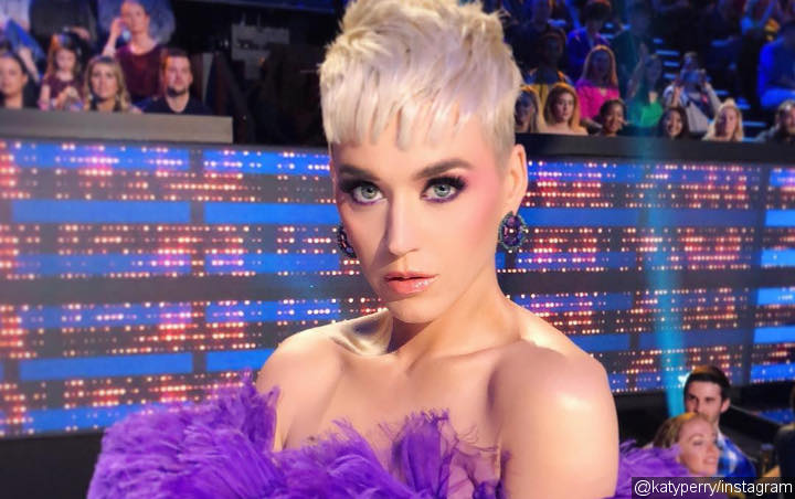 Katy Perry Treated to Cover of Her Christmas Song by 'American Idol' Hopefuls