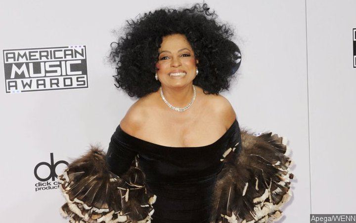 Diana Ross Kicks Fan Poking Her in Stomach Out of Surprise Concert
