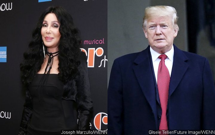 Cher Calls Prison 'Toy Boy' Joke on Donald Trump Her 'WTF Moment'