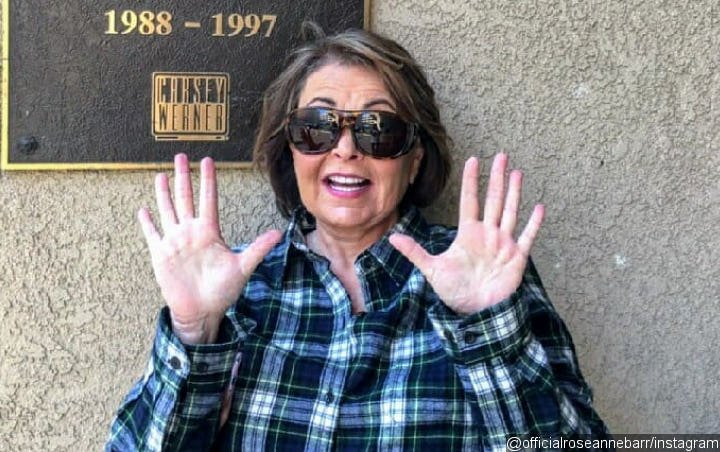 Roseanne Barr Believes ABC Conspired to 'Steal Her Life's Work' With Sitcom Firing
