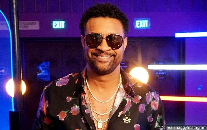 Shaggy Warns Fans of Internet Scammers Pretending to Be Him