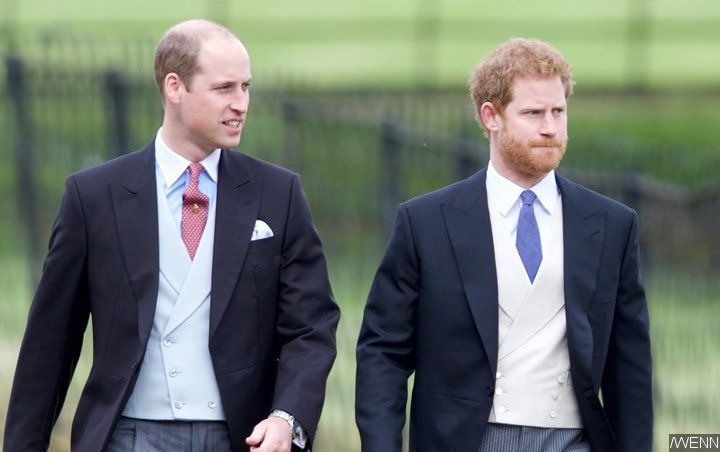 Prince Harry Addresses Tension With Brother Prince William: 'Stuff Happens'