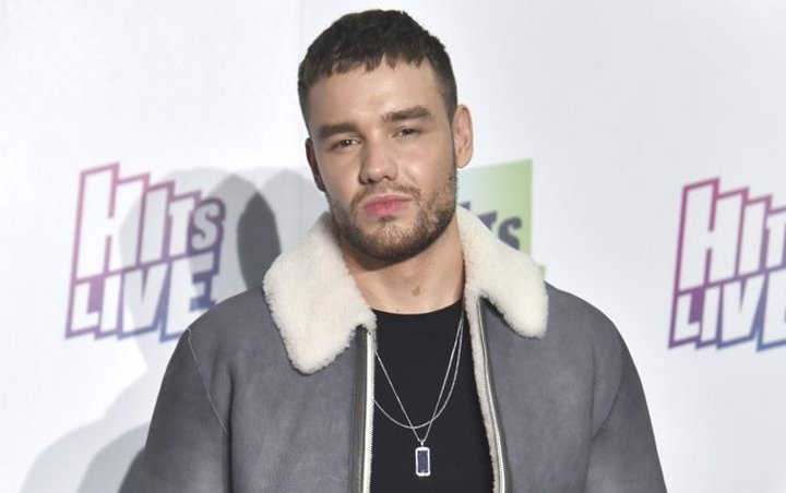 Liam Payne Jumped by Bouncers During Night Out
