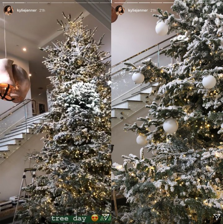 Story Behind Christmas Tree: Kylie Jenner Reveals Her Jaw-Dropping Christmas Tree