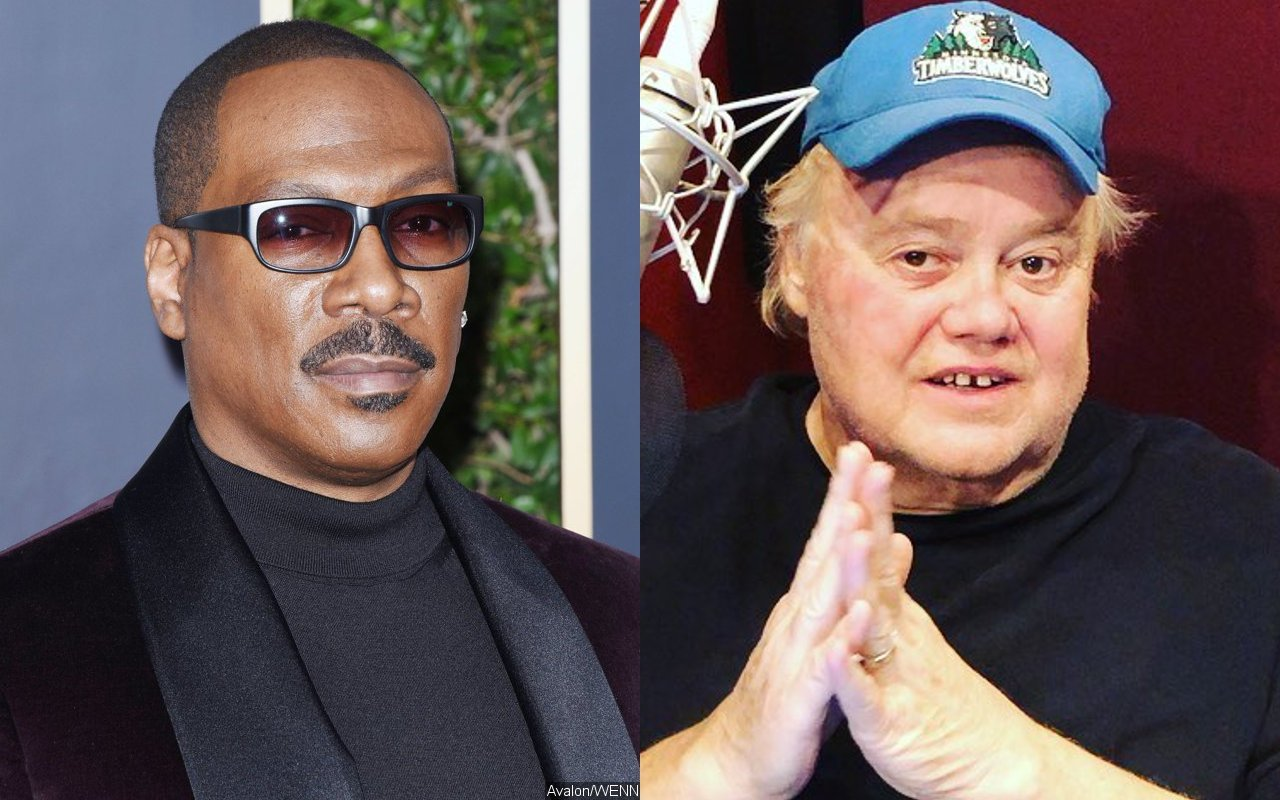 Eddie Murphy Cast Louie Anderson in 'Coming to America' to Meet Studio's Demand of 'White Guy'