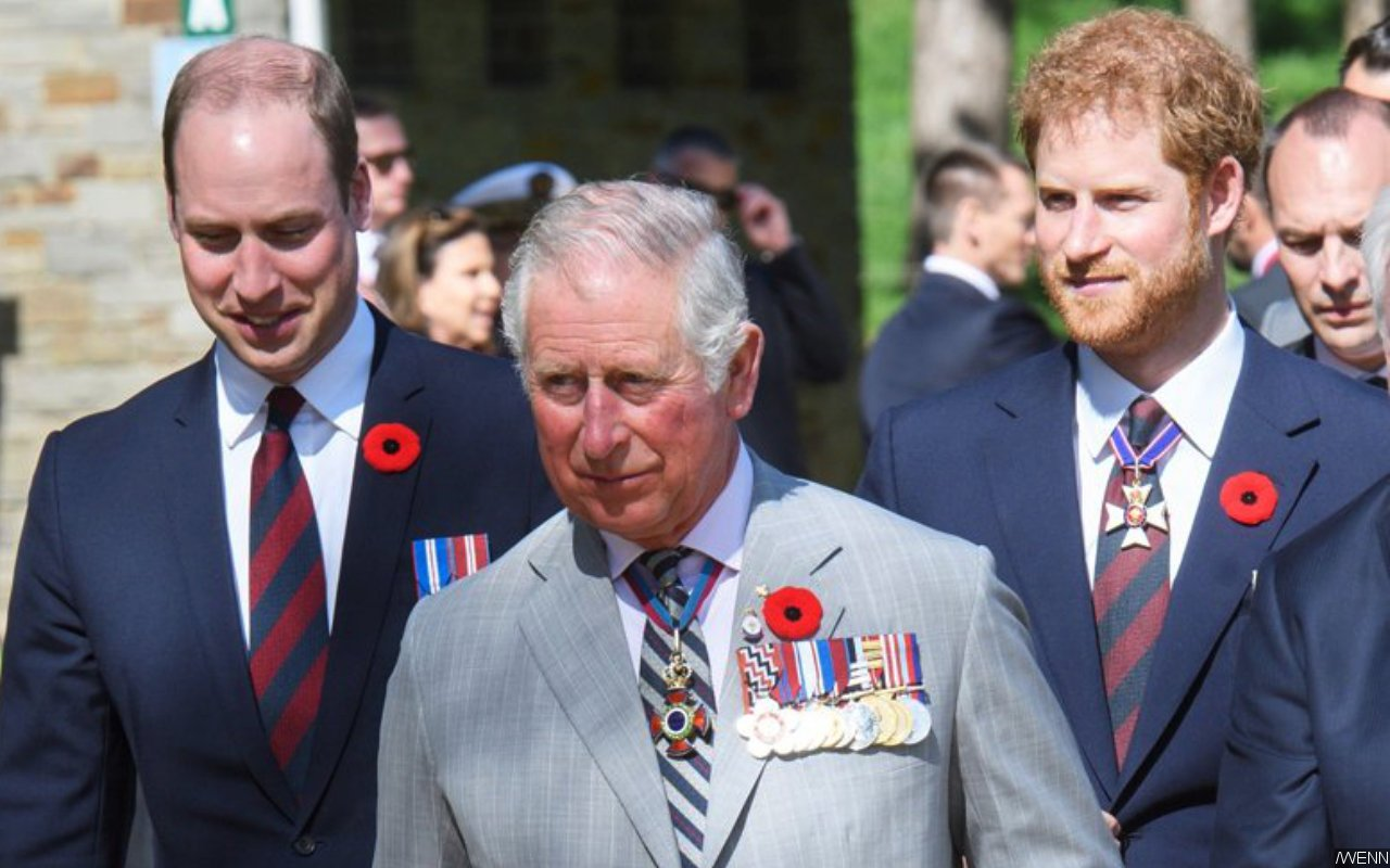 Report: Prince Harry and Prince William's Tension With Dad Prince Charles Is Over Money