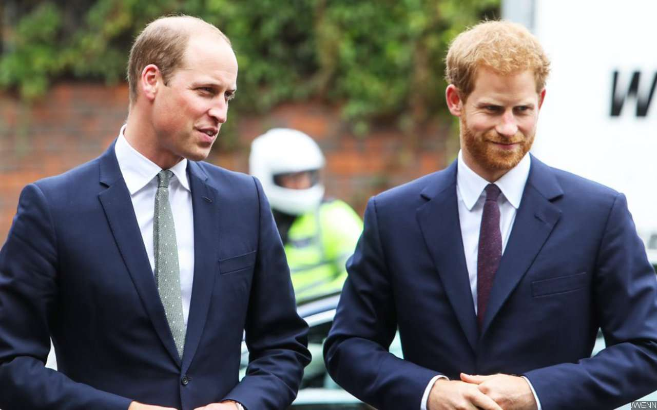 Report: Prince William Accuses Prince Harry of 'Putting Fame Over Family'