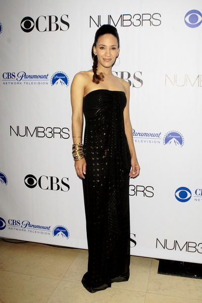 """Numb3rs"" 100th Episode Bash - Arrivals"