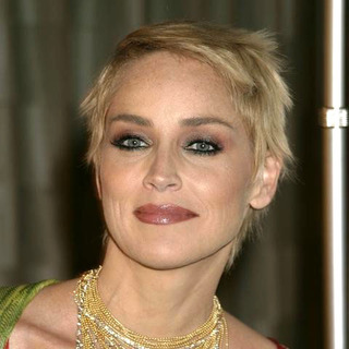 Sharon Stone in AAFA American Image Awards
