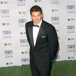 David Boreanaz in 35th Annual People's Choice Awards - Arrivals